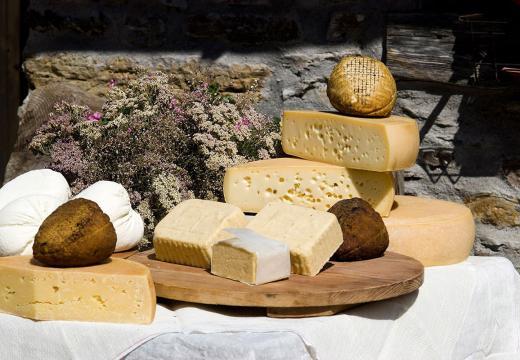 Degustazioni dei prodotti di Malga in Val di Rabbi
