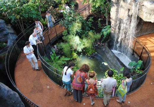 Il giardino tropicale del Muse di Trento