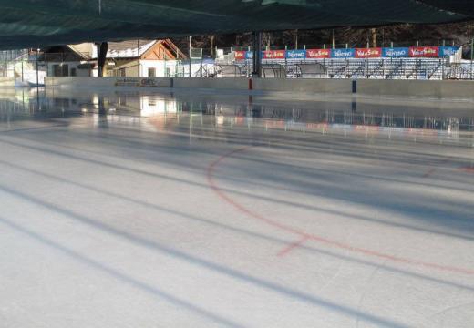 Primi passi per pattinare e giocare a hockey