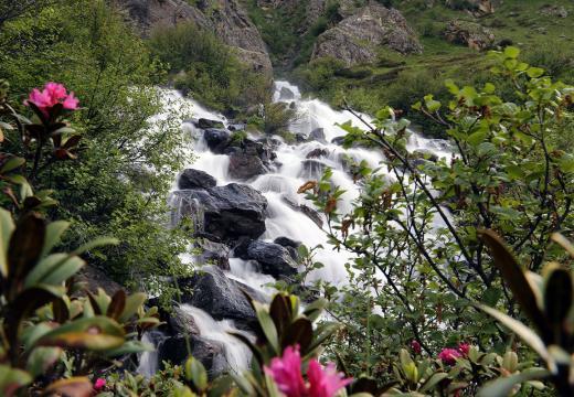 Ruscelli di montagna nel Parco Nazionale dello Stelvio