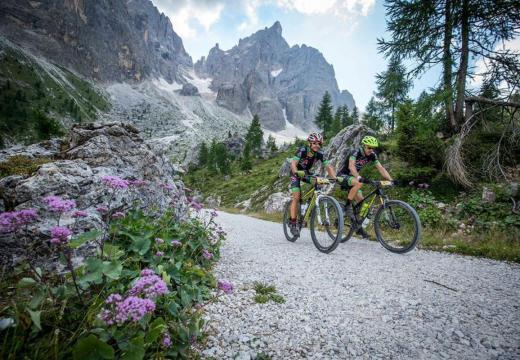Bike sui sentieri di montagna della Val di Sole